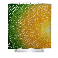 Spring Sun Original Painting Shower Curtain
