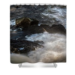 Spring Thaw II Shower Curtain by Bob Orsillo