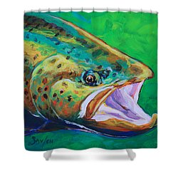 Spring Time Brown Trout- Fly Fishing Art Shower Curtain by Savlen Art