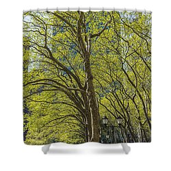 Spring Time In Bryant Park New York Shower Curtain by Angela A Stanton