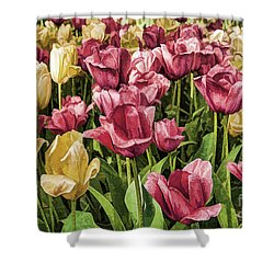 Spring Tulips Shower Curtain by Linda Blair