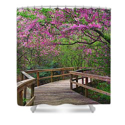 Spring Walk Shower Curtain