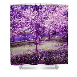 Spring Wonderland Pastel. Garden Keukenhof. Netherlands Shower Curtain by Jenny Rainbow