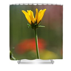 Spring Yellow  Shower Curtain by Neal Eslinger