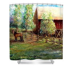 Shower Curtain featuring the painting Springborn Horse Farm by Bernadette Krupa