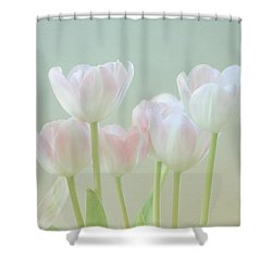 Spring's Pastels Shower Curtain by Kim Hojnacki