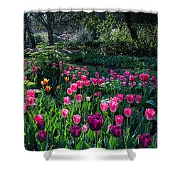 The Promise Of Spring Shower Curtain by Lynn Bauer