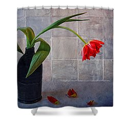 Springtime Blues Shower Curtain by Claudia Moeckel