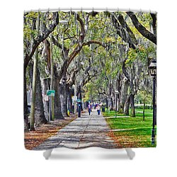 Springtime In Savannah Shower Curtain by Lydia Holly