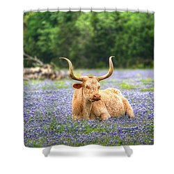Springtime In Texas Shower Curtain by Dave Files