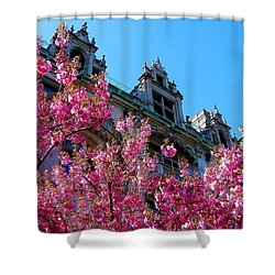 Springtime On Commonwealth Avenue Shower Curtain