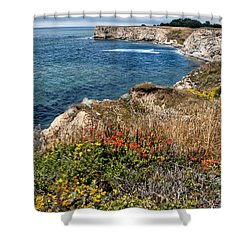 Springtime On The California Coast Shower Curtain