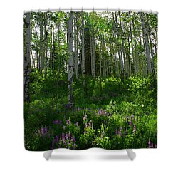 Springtime On The Grand Mesa Shower Curtain by Ernie Echols
