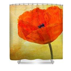 Springtime Poppy Beauty Shower Curtain by Denyse Duhaime