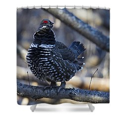 Spruce Hen Shower Curtain