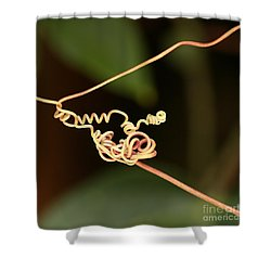 Squiggles Shower Curtain by Sabrina L Ryan