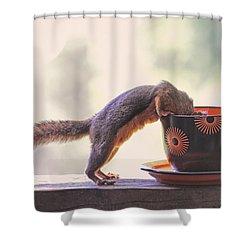 Squirrel And Coffee Shower Curtain by Peggy Collins