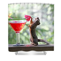 Squirrel At Cocktail Hour Shower Curtain