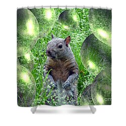 Squirrel In Bubbles Shower Curtain