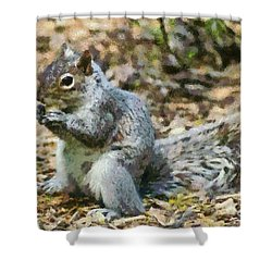 Squirrel In Central Park Shower Curtain by George Atsametakis
