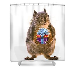Squirrel With Gift Shower Curtain by Peggy Collins