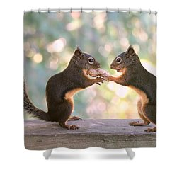 Squirrels That Share Shower Curtain by Peggy Collins