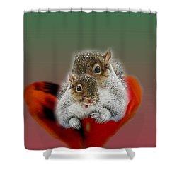 Squirrels Valentine Shower Curtain