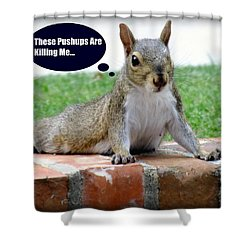Squirrely Push Ups Shower Curtain by Karen Wiles