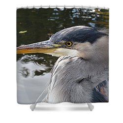 Shower Curtain featuring the photograph Sr Heron  by Cheryl Hoyle