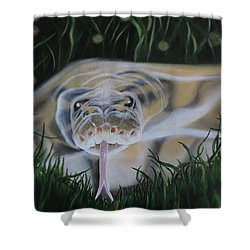 Shower Curtain featuring the painting Ssssmantha by Dianna Lewis