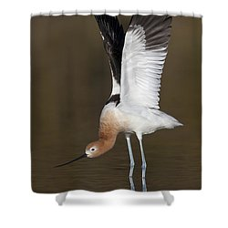 Shower Curtain featuring the photograph Sstretchhh by Bryan Keil