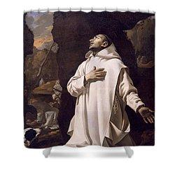 St Bruno Praying In Desert Shower Curtain by Nicolas Mignard