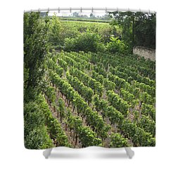 St. Emilion Vineyard Shower Curtain by HEVi FineArt