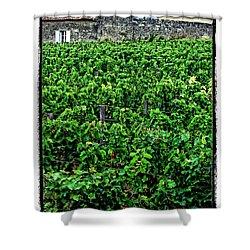 St. Emilion Winery Shower Curtain by Joan  Minchak