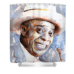 Shower Curtain featuring the painting St. Louis Blues 2 by Laur Iduc