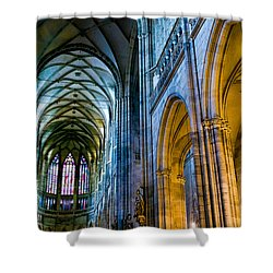 St Vitus Cathedral Shower Curtain by Dave Bowman