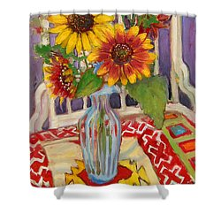 St011 Shower Curtain