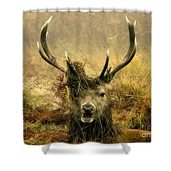 Stag Party The Series. One More For The Road Shower Curtain