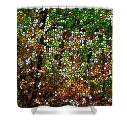Stained Glass Autumn Colors In The Forest 1 Shower Curtain by Lanjee Chee