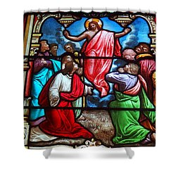 Shower Curtain featuring the photograph Stained Glass by Ed Weidman