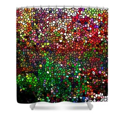 Stained Glass  Fall Reflected In The Still Waters Shower Curtain by Lanjee Chee