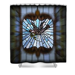 Stained Glass Lc 13 Shower Curtain by Thomas Woolworth