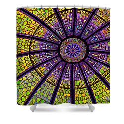 Shower Curtain featuring the photograph Stained Glass by Sue Melvin