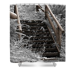 Shower Curtain featuring the photograph Stairway Home by Jeanette C Landstrom