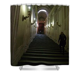 Shower Curtain featuring the photograph Stairway  by Robin Maria Pedrero