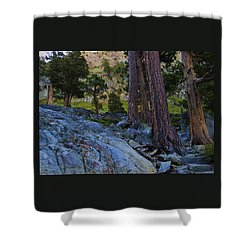 Shower Curtain featuring the photograph Stairway To Heaven by Sean Sarsfield
