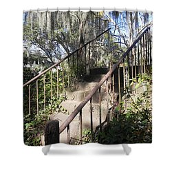 Stairway To Nowhere Shower Curtain by Patricia Greer