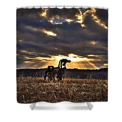 Stairways To Heaven The Iron Horse Shower Curtain