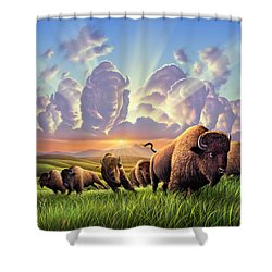 Stampede Shower Curtain by Jerry LoFaro
