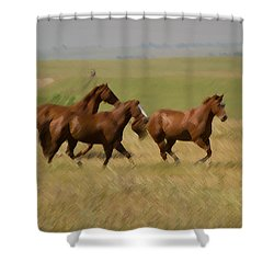 Shower Curtain featuring the photograph Stances by Rima Biswas